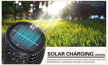 Tấm pin hấp thụ ánh sáng mặt trời