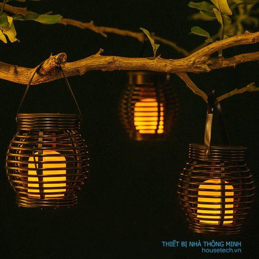 Đèn lồng treo cây tại Hà Nội