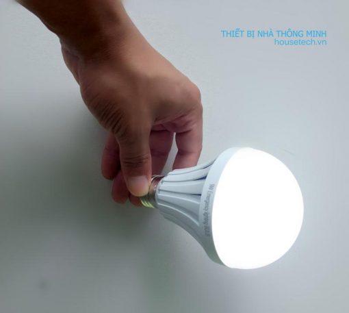 Với ánh sáng dịu nhẹ